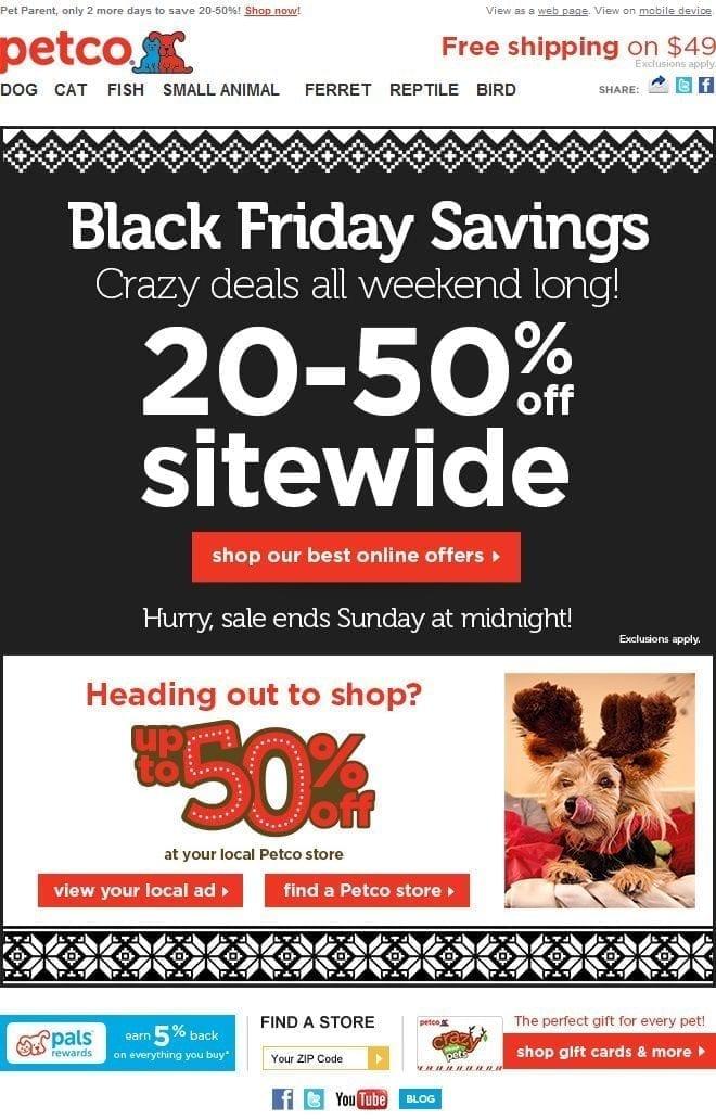 Petco Black Friday Email