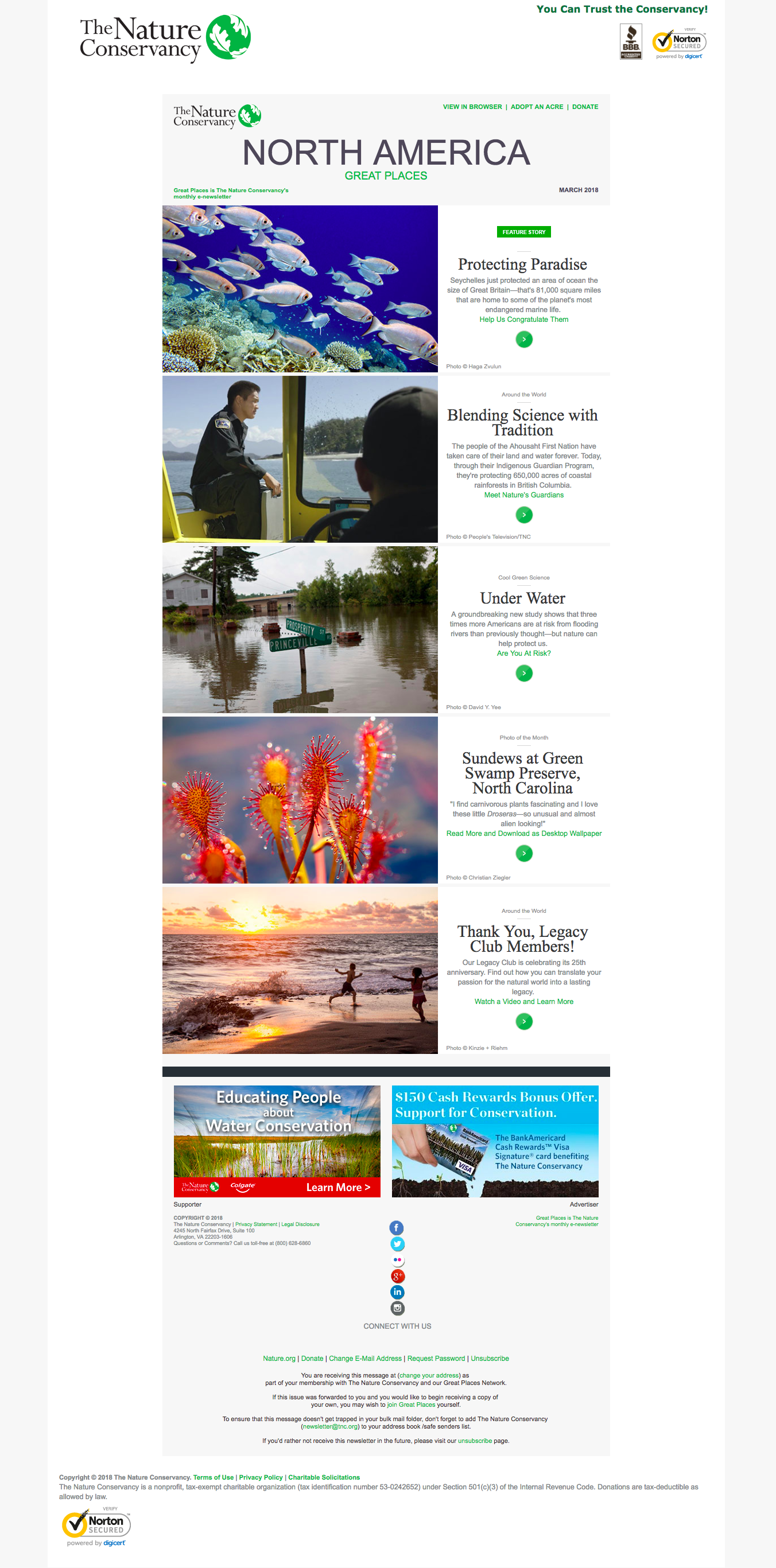 Nature Conservancy newsletter example