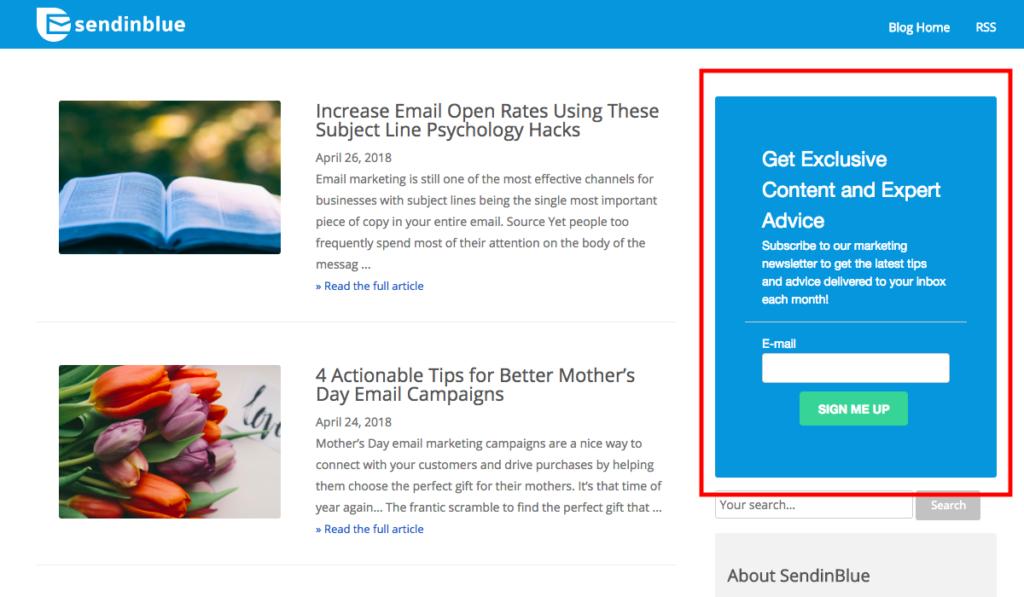 blog opt-in