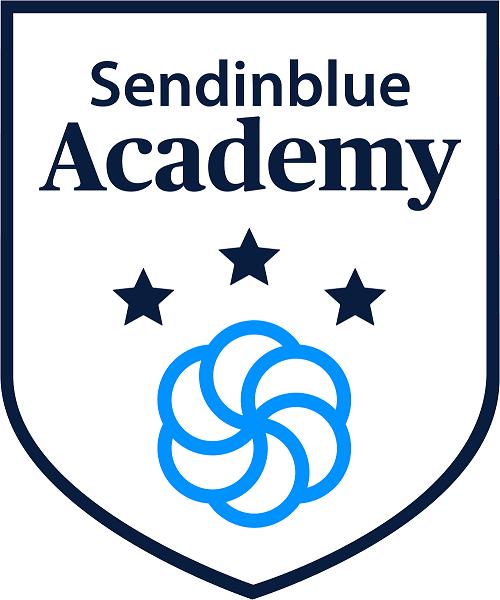 Sendinblue Academy Logo