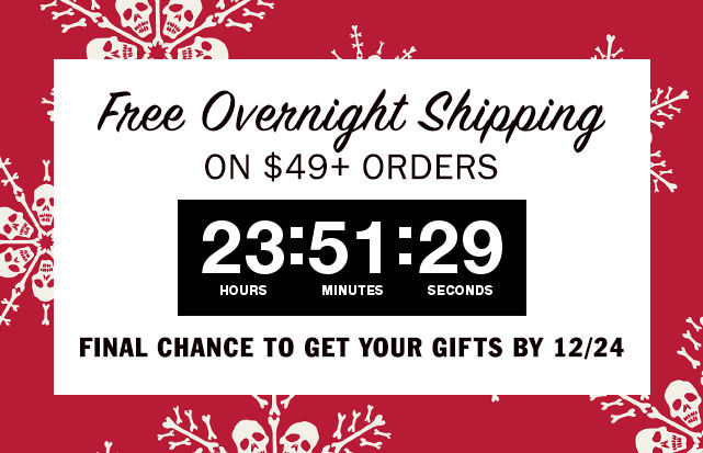 Example holiday marketing campaign by Vans with flash free shipping