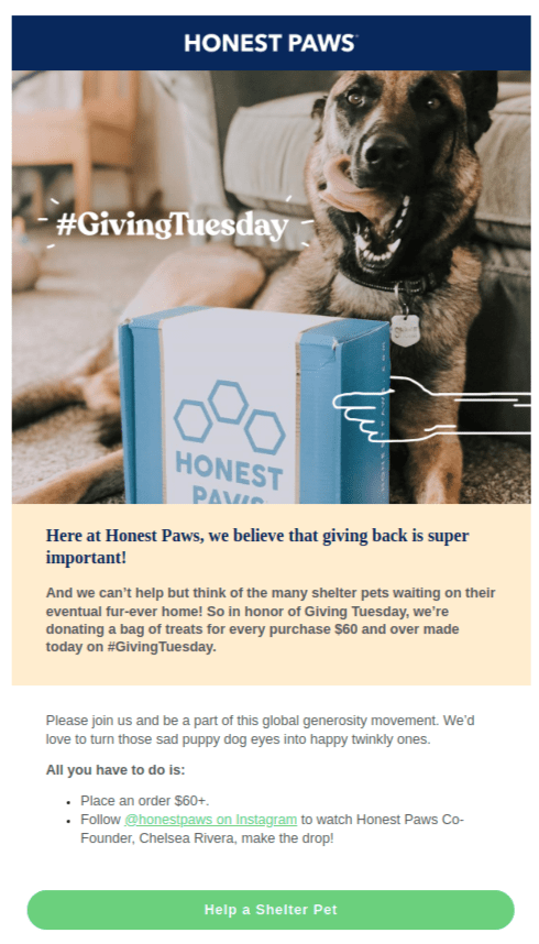 Giving Tuesday email example by company Honest Paws, promoting their product donations